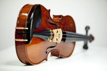 Pourquoi choisir le violon ?